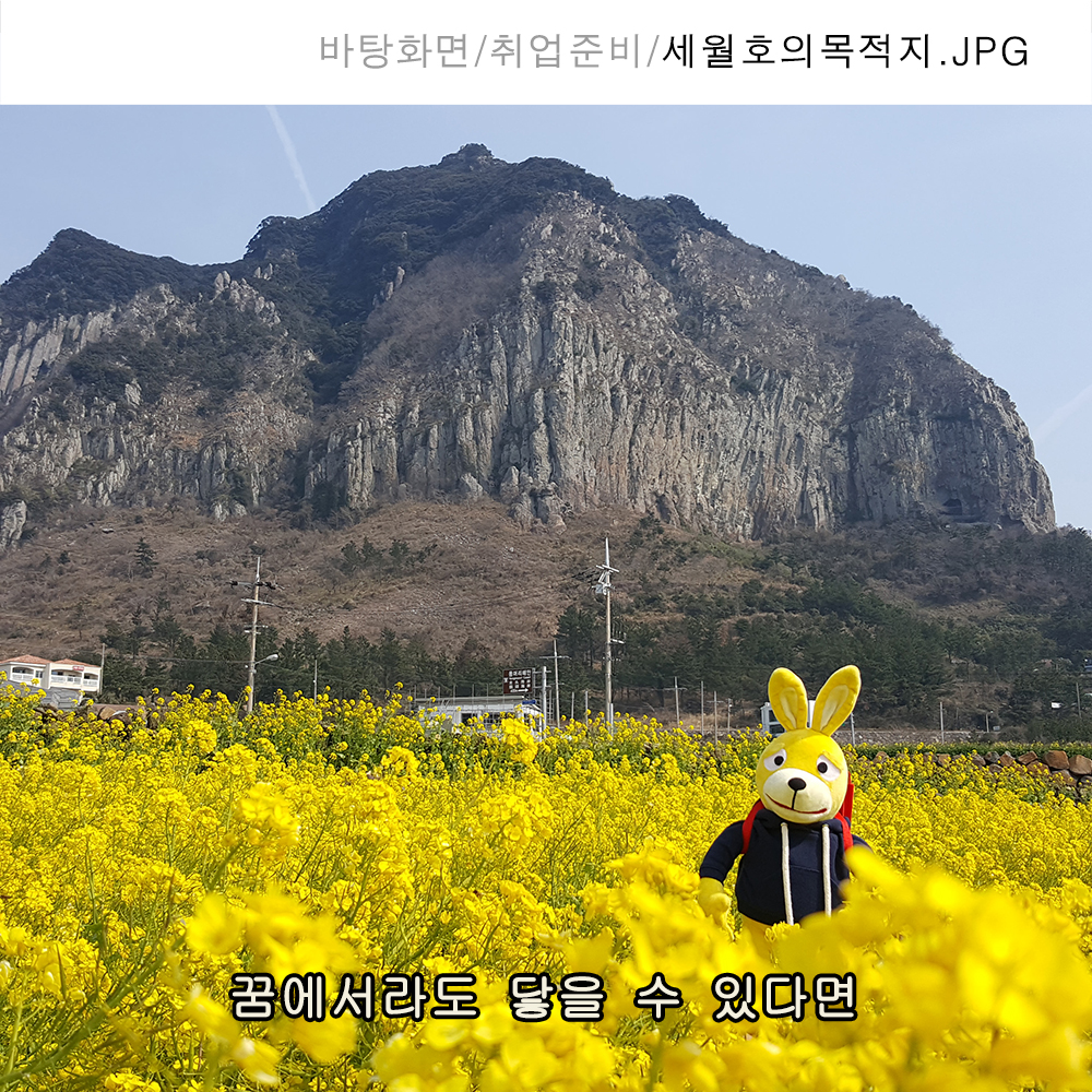 43_세월호의목적지.jpg