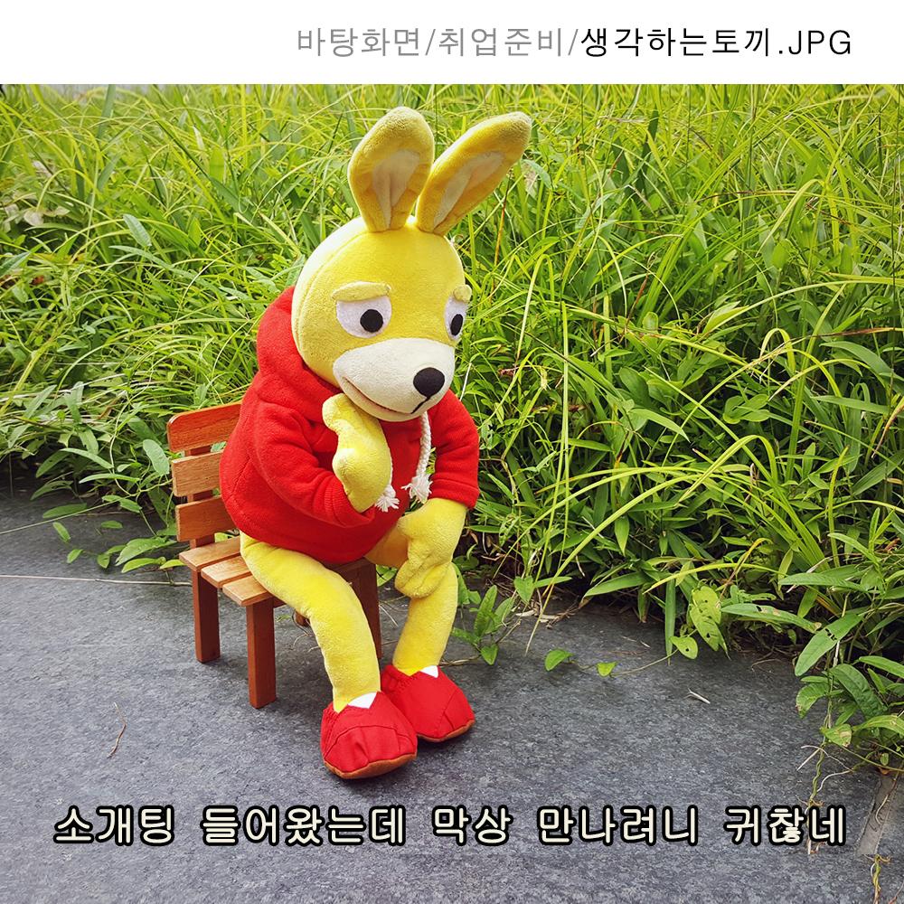 175_생각하는토끼.jpg