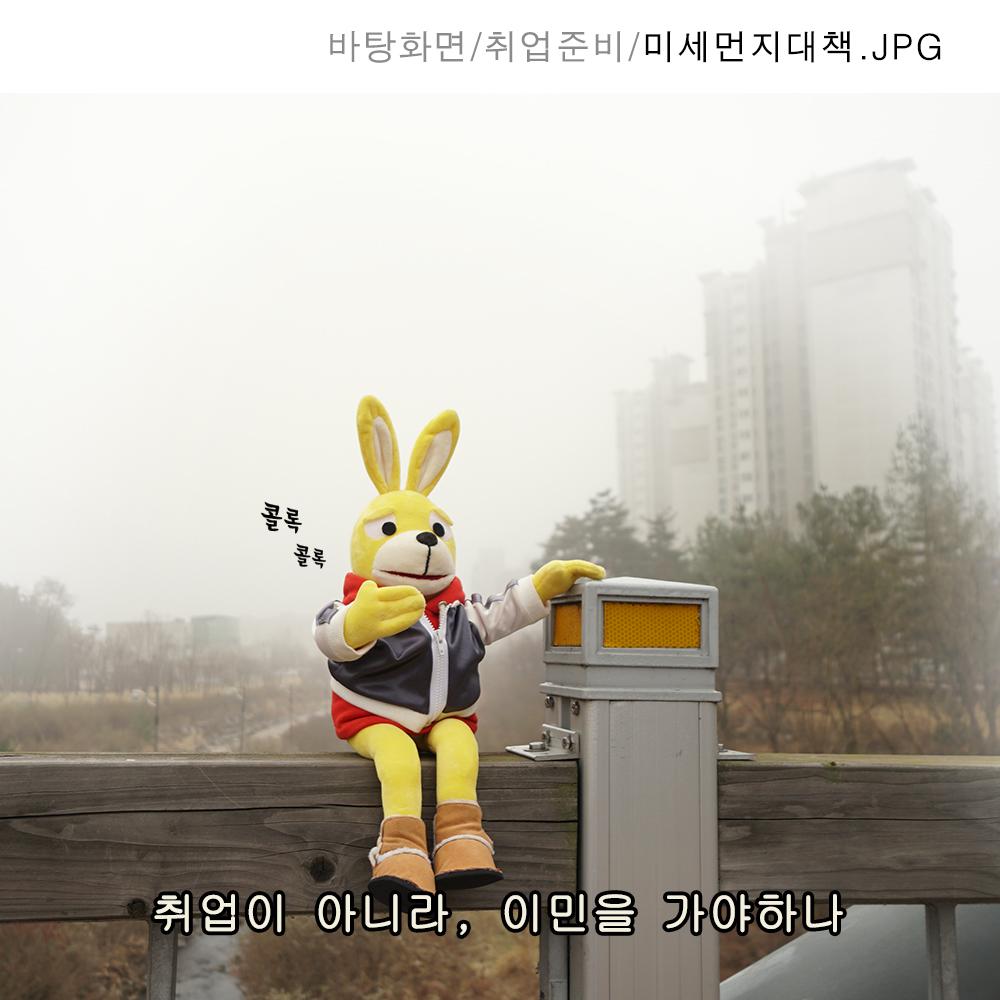 323_미세먼지대책.jpg